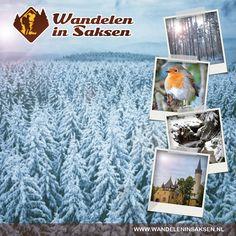Am nächsten Morgen, war es draußen so still und in sanften Flocken hatten sich noch mal an die 30 cm frostiges Weiß ausgebreitet. So schön ! Schnee und blauer Himmel. Das perfekte Wetter, Es waren wunderbare Stunden für uns da draußen. Die Winterwanderung, ein berührendes Erlebnis, Spuren so in den Schnee zu setzen. http://www.purschenstein.de/de-de/specials/schneewandern-im-erzgebirge.htm