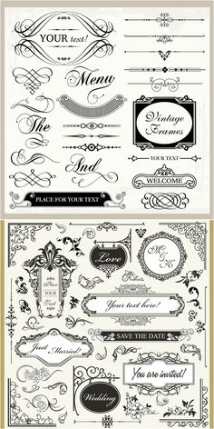 Vintage wedding ornaments vector