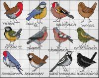 Gallery.ru / Фото #106 - В основном птицы_3/Freebies - Jozephina