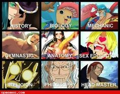 one piece memes tumblr - Google Search