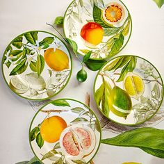 Botanical Citrus Salad Plates, Set of 4 | Williams-Sonoma