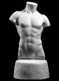 Male Torso Art Reference Cast by Philippe Faraut