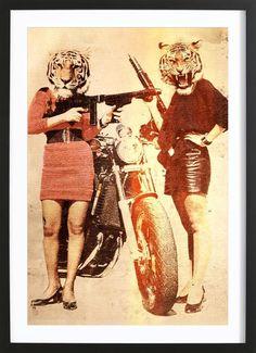 Tiger Girls VON John Keddie now on JUNIQE!