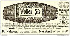 Original-Werbung/ Anzeige 1903 - CIGARREN / POKORA CIGARRENFABRIK  - ca. 100 x…