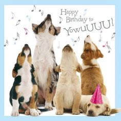 Dogs howling happy birthday to you