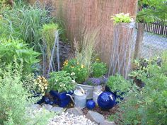 Lückenfüller Blue and silver in the garden