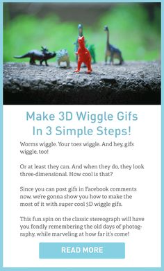 Now that Facebook is allowing gifs (whee!), we wanna use that new found power to post lots of 3D photos in the form of fun wiggle gifs!