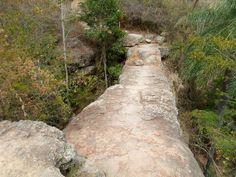 ponte de pedra nova olinda - Pesquisa Google