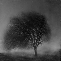 Fotografia Untitled de Emese-durcka Laki na 500px