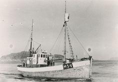 Sailing Ships, Museum, Fishing Boats, Museums, Tall Ships