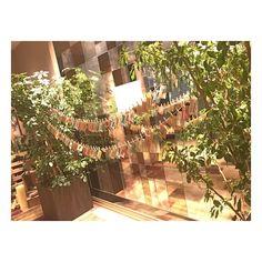 いいね!95件、コメント1件 ― naomi arakiさん(@naomi_0926)のInstagramアカウント: 「. . バッチリ可愛すぎましたエスコートカード✈️ . . 梅木さん一生懸命動かされたんだろうなぁ . さすがです☺️ . . #QUANTIC #クアンティック #福岡結婚式場…」