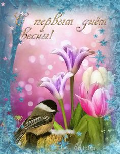 Amazing Gifs, Bird Gif, Morning Greetings Quotes, Good Morning, Easter, Birds, Seasons, Spring, Messages