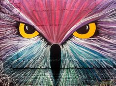 Owl - Colors in Los Angeles Pinned by www.myowlbarn.com