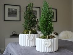 It's time for first christmas decoration. DIY. Now on my blog.  http://www.push-coco.de/blog/diy-weihnachtsbaeume-2/