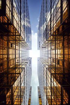 Vertical Horizon | by Romainjl