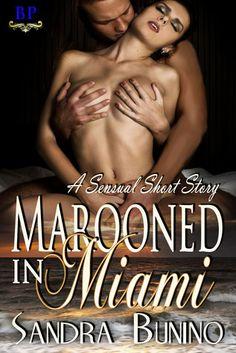 Marooned In Miami By Sandra Bunino