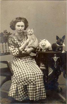 Vintage Photography of a young girl with her two cats and one dog. Antique Photos, Vintage Pictures, Vintage Photographs, Old Pictures, Vintage Images, Old Photos, Crazy Cat Lady, Crazy Cats, Vintage Abbildungen