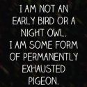 funniest quotes on the internet 020