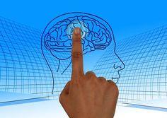 Education Positive, Reward System, Traumatic Brain Injury, Subconscious Mind, Brain Health, Healthy Brain, Happy Healthy, Healthy Foods, Healthy Life