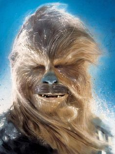 chewy what a wookie