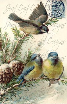 French Blue by Sheila and Shannon on Etsy.with my bicycle painting in it! Decoupage Vintage, Vintage Ephemera, Vintage Cards, Vintage Images, Etsy Vintage, Retro, Bird Pictures, Bird Art, Vintage Postcards