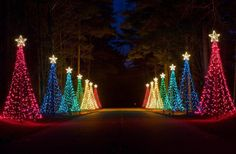 Callaway Gardens - Pine Mountain, Georgia - Fantasy in Lights - more than 8 million twinkling lights.a family tradition! Best Christmas Light Displays, Best Christmas Lights, Holiday Lights, Outdoor Christmas, Christmas Holidays, Christmas Decorations, Merry Christmas, Xmas Lights, Christmas Stuff