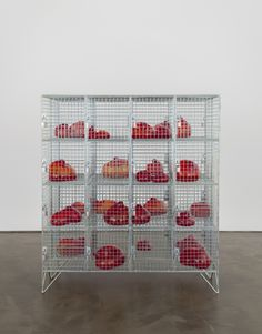 Mona Hatoum sea creature ceramic installation for art show? Abstract Sculpture, Sculpture Art, Contemporary Sculpture, Contemporary Art, Cage, Instalation Art, Red Colour Palette, Soul Art, Red Art
