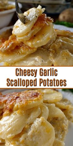 Garlic Scalloped Potatoes Cheesy Garlic Scalloped Potatoes are cheesy, delicious and a perfect side dish to most meals.Cheesy Garlic Scalloped Potatoes are cheesy, delicious and a perfect side dish to most meals. Potato Sides, Potato Side Dishes, Vegetable Dishes, Side Dishes For Ribs, Steak Side Dishes, Side Dishes For Salmon, Side Dishes For Chicken, Turkey Side Dishes, Recipes Potatoes Side Dishes