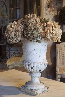 And don't forget how fabulous hydrangeas look when dried!