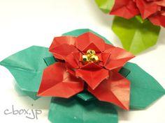 クリスマスの花といえば、ご存じポインセチア。 あの真っ赤な色があまりにも毒々しいような気がして、若い頃はあまり…