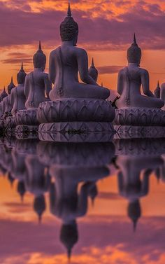 Many Buddha statue on sunset, India (by Anek Suwannaphoom)