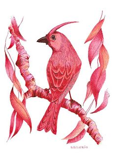 Small birds in red ink
