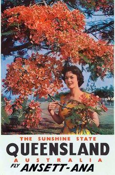 Queensland ~ Fly Ansett-ANA (1960s)