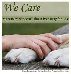 Veterinary Wisdom Resource Center