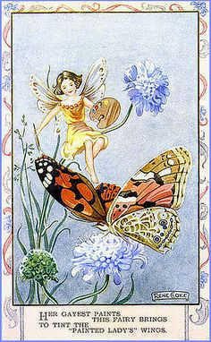 Painted Lady Butterfly, by Rene Cloke