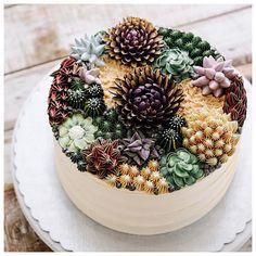 Succulent Cakes | POPSUGAR Food