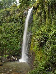 Coban Ringin Gantung Wisata Menantang Adrenalin di Malang Jawa Timur - Jawa Timur