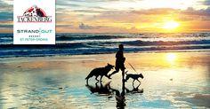 Mit 12 Fragen zu Hund, Ernährung, BARF und Rohfleisch verlost TACKENBERG zwei Übernachtungen im  Strandgut Resort sowie Gutscheine für den Online-Shop