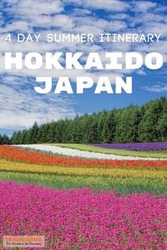 A summer travel guide to Hokkaido, Japan. How to spend 4 days on Japan's second largest island, including stops at Niseko, Lake Toya, and the incredible flower fields. | Blog by Travel Dudes: Community for Travelers, by Travelers!