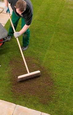 How To Topdress Your Lawn