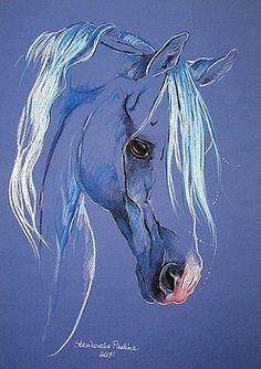 Artist Directory : Arabian horse by Paulina Stasikowska Horse Drawings, Cute Drawings, Equine Art, Pastel Art, Wildlife Art, Horse Art, Animal Paintings, Art Techniques, Art Pictures