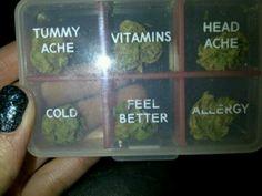weed ganja kush pot dank bud trees 420 thc green herb chronic cheeba diggitydank