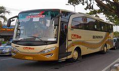Group / rombongan anda lebih dari 20 orang? Jasa Transport Bali punya solusinya. Kami tawarkan sewa bus 25 seat Di Bali dengan fasilitas lengkap. Full AC, Audio Vidio, tempat duduk yang nyaman . Sewa bus 25 seat di Bali yang kami tawarkan ini tentunya menawarkan kenyamanan oleh fasilitas andalan yang akan membuat anda betah selama di perjalanan. Toyota, Bali, Transportation