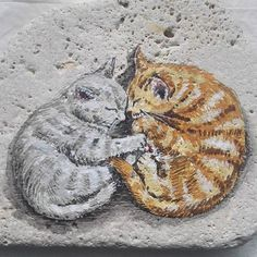 Tas uzerine akrilik boya (rock painting) #art #illustration #cat #drawing #acrylic