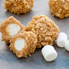 Fluffer Nutter Bites  ½ 	cup peanut butter  ½ 	cup honey  1 	cup nonfat dry milk  36 	mini marshmallows  1 	cup chopped peanuts