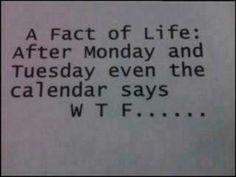 *Fact