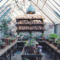 A great potting shed gets to me everytime. This is at Soho Farmhouse. Sheds like this are so appealing with their piles of upended terracotta pots and slatted potting tables and loads of special bulbs and tender plants. This is a repost from via Greenhouse Shed, Greenhouse Gardening, Cheap Greenhouse, Portable Greenhouse, Greenhouse Tables, Indoor Greenhouse, Cheap Pergola, Dream Garden, Home And Garden