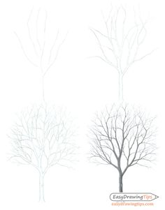 How to Draw a Tree Step by Step Tutorial - EasyDrawingTips Drawing Tips tree drawing Tree Line Drawing, Tree Drawings Pencil, Tree Drawing Simple, Branch Drawing, Landscape Pencil Drawings, Flower Art Drawing, Simple Tree, Small Drawings, Leaf Drawing
