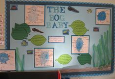 1 Outdoor Learning, Home Learning, New Classroom, Classroom Ideas, Baby Blog, Display Boards, Display Ideas, Eyfs, Infant Activities
