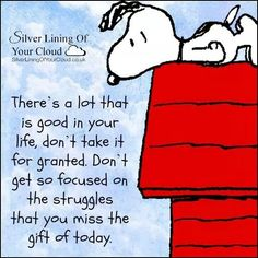 ♥  Don't get so focused on the struggles that you forget the gift of today. ☆